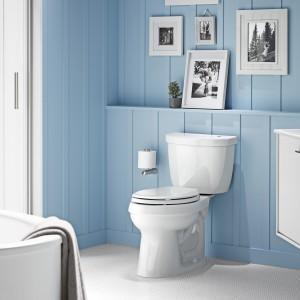 Kohler's Cimarron Touchless toilet with Brevia toilet seat
