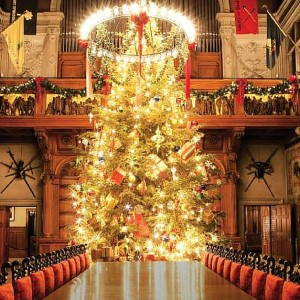 Biltmore House Christmas Decorations