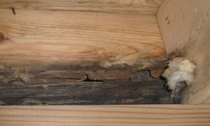 Rotting band sill caused by improper flashing and water entry around door thresholds