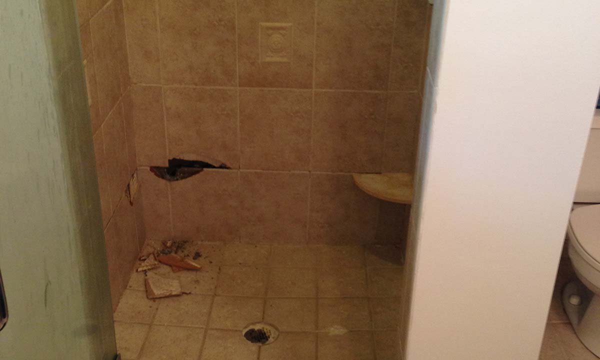 Before picture of the shower