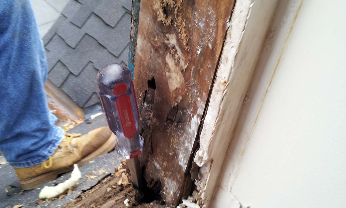 Wood window sill rot – before repair