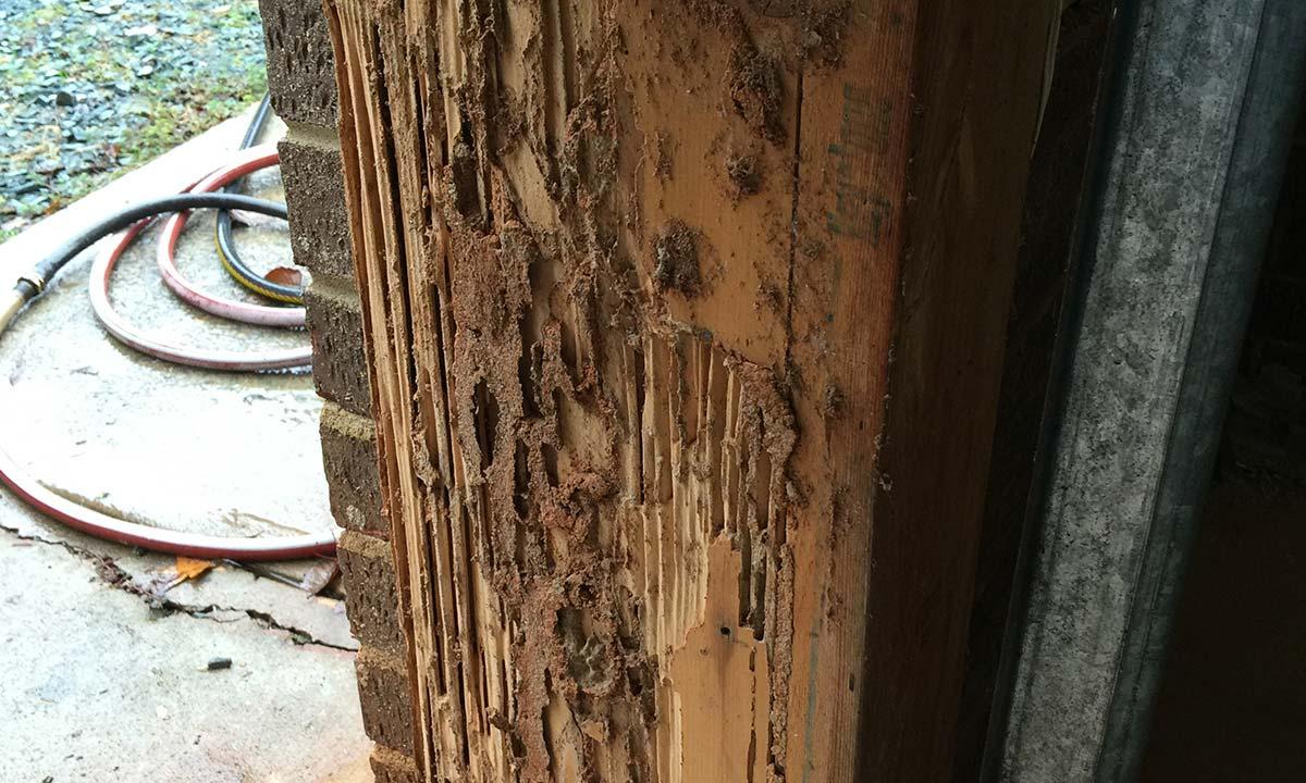 Garage wood rot – before repair