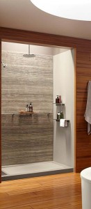 Built in stainless steel shower grab bar for family friendly bathrooms