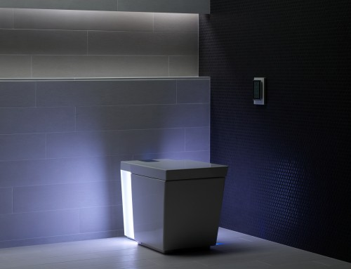 The toilet: The crowning jewel of your bathroom remodel?