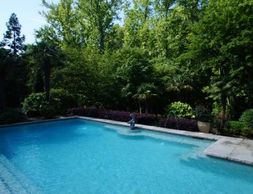 Dive into your Charlotte pool maintenance